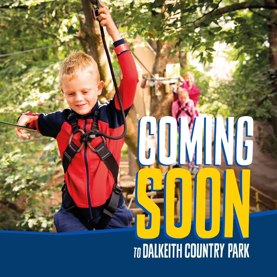 Go Ape at Dalkeith Country Park